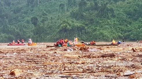 Gỗ phủ kín mặt nước trên lòng hồ thủy điện ở Quảng Nam