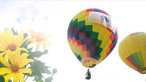 Hơn 20.000 khách ngắm hoa dã quỳ trên núi Ba Vì từ khinh khí cầu