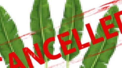 Nỗi buồn startup: Vừa đoạt Giải Nhất, dự án ép lá chuối thành hộp đã bị ngót nghét 10 bên tranh đăng ký thương hiệu, tên miền cũng bị mua sạch!