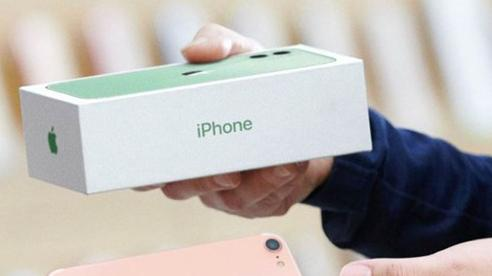 Tản mạn thị trường iPhone: Tại sao máy cũ vẫn được ưa chuộng, bất chấp iPhone 12 đã về Việt Nam?