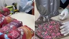 TP.HCM: Phát hiện hơn 20kg ma túy 'đội lốt' lô hàng quà biếu