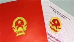Cựu cán bộ phường ở Đà Nẵng cấu kết với 'cò' làm giả 238 hồ sơ đất