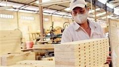 Ngành lâm nghiệp hướng đến mục tiêu xuất khẩu 13 tỷ USD