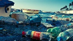 Nhựa đang dần 'xâm chiếm' hành tinh chúng ta