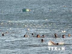 Ninh Thuận: 'Trận địa lưới' bao vây khách tắm biển Bình Sơn-Ninh Chữ