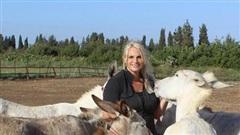 Người phụ nữ Anh chi đến 185 triệu đồng/tháng để giải cứu những con lừa ở... Israel
