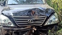 Xe sang Lexus mất lái tông gãy cây có đường kính hơn 20cm, nhiều người đi đường khiếp vía