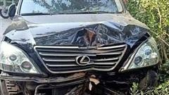 Xe ô tô Lexus gây tai nạn giao thông, húc đổ gốc cây