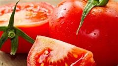 Thực đơn giúp giảm 4 kg trong 1 tuần chỉ với cà chua