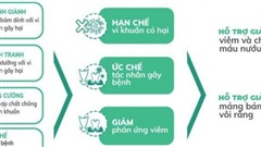 Men vi sinh nha khoa - Giải pháp mới cho bệnh viêm nha chu