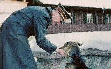 Con chó cưng được Hitler yêu chiều hơn cả tình nhân