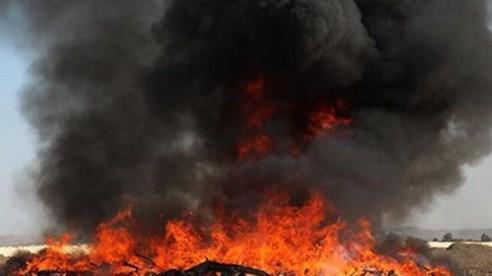 Afghanistan tiêu hủy hơn 24 tấn ma túy