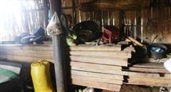 Lúng túng việc xử lý vụ phá rừng quy mô lớn ở núi Tà Lét