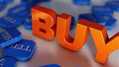 AFX tăng 71% từ đầu tháng 11, một cá nhân vẫn muốn ôm trọn gần 18 triệu cổ phần Afiex do SCIC thoái vốn