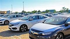 Ô tô nhập khẩu tạm thời mất doanh số trước lắp ráp trong nước