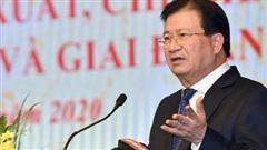 Phó Thủ tướng Trịnh Đình Dũng: Đến năm 2025 phấn đấu có ít nhất 1 triệu ha rừng trồng gỗ lớn