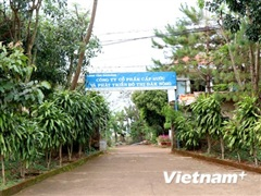 Chậm thu hồi công nợ của Cấp thoát nước và phát triển đô thị Đắk Nông