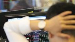 VAFI: 'Cổ tức bằng cổ phiếu không thể coi là thu nhập từ đầu tư vốn và không nên bị áp thuế'
