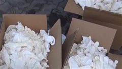 Bắt giữ 2 container găng tay đã qua sử dụng