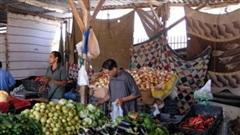 Giá lương thực thế giới tăng tháng thứ 6 liên tiếp