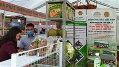 Tìm kiếm, mở rộng thị trường cho nông dân sản xuất rừng và trang trại