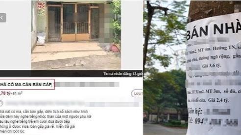 Rao bán nhà với màn mô tả gắn đầy 'yếu tố tâm linh', anh chủ thật thà khiến CĐM hào hứng bàn luận