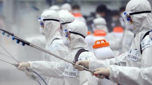 Đến sáng 3/12, thế giới có hơn 64,7 triệu ca nhiễm COVID-19