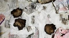 Vụ cha con đại gia Thiện 'Soi' bị bắt: Lời khai ban đầu của nghi phạm