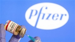 Giám đốc điều hành Pfizer không chắc điều gì về vaccine COVID-19