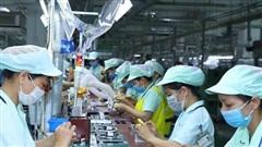 Hai yếu tố hấp dẫn, thu hút đại bàng đến Việt Nam xây tổ