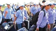 Xử phạt doanh nghiệp đưa người lao động đi làm việc ở nước ngoài