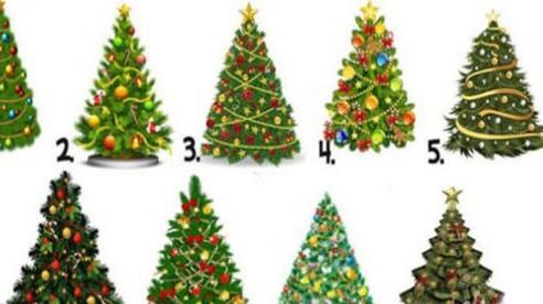 Hãy chọn một cây thông Noel để biết năm mới 2021 của bạn sẽ thế nào: Thành công hay may mắn?