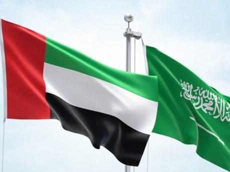 UAE ủng hộ nỗ lực của Saudi Arabia giải quyết khủng hoảng Vùng Vịnh