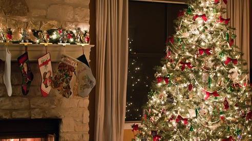 Nguồn gốc truyền thống trang trí cây thông dịp Giáng sinh