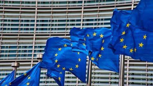 Minh chứng trừng phạt Nga, EU tự vác đá ghè chân