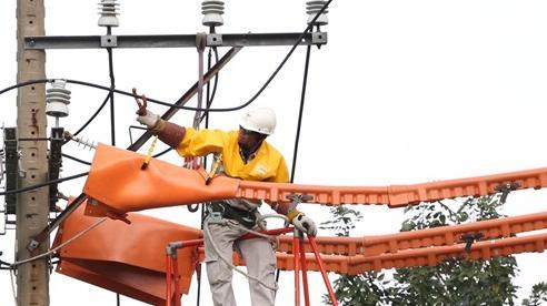 EVNHCMC thi công sửa chữa đường dây mang điện bằng phương pháp mới