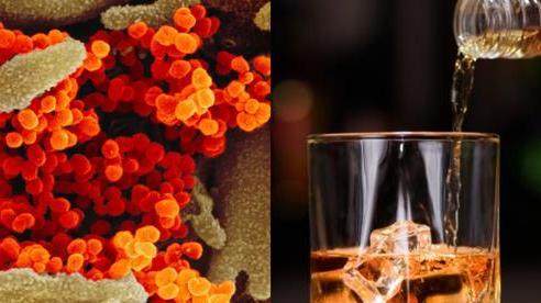 Uống rượu có giết được virus trong cơ thể: Chuyên gia nói sẽ 'giết người trước khi giết virus'