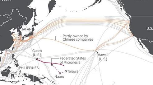 Mỹ 'cấm cản' Huawei thầu cáp quang biển khu vực Thái Bình Dương