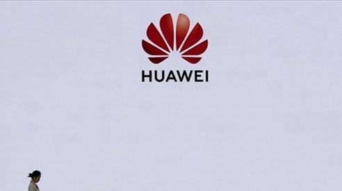 Trung Đông - 'Mảnh đất màu mỡ' cuối cùng của Huawei?