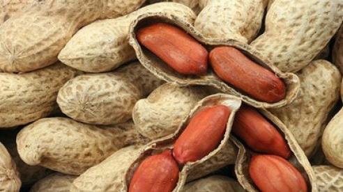 Lạc - thực phẩm tốt cho sức khỏe mùa đông