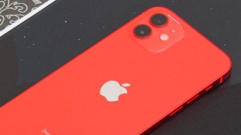 iPhone 12 và iPhone 12 mini giảm giá hàng triệu đồng tại Việt Nam