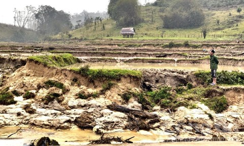 Thuỷ điện 'ngốn' hơn 100 ha rừng bị tố làm sạt lở đất của dân