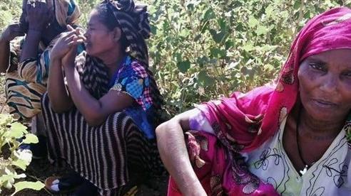 Cáo buộc xâm phạm lãnh thổ, Sudan giành quyền kiểm soát biên giới đất liền với Ethiopia