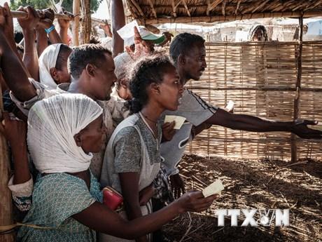 Sudan tuyên bố giành quyền kiểm soát phần lớn biên giới với Ethiopia