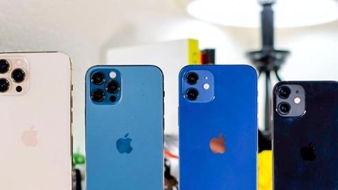6 mẫu iPhone đang giảm giá hàng triệu đồng tại Việt Nam dịp cuối năm