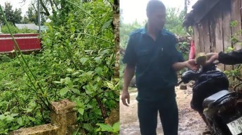 Vào nghĩa địa bẫy mèo, 2 thanh niên bị đánh bằng súng, cưỡng đoạt tiền