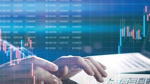 Chứng khoán 2021: Kỳ vọng từ dòng vốn đầu tư nước ngoài