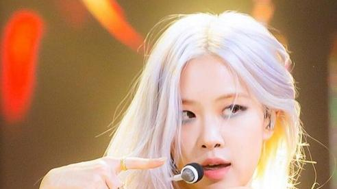 Knet ngán ngẩm với lời hứa của YG về màn solo của BlackPink