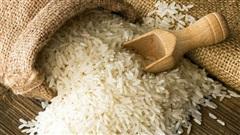 Lúa gạo ăn không hết để mốc hỏng, cả gia đình người đàn ông vẫn chết vì đói: Lý do cảnh tỉnh nhiều người!