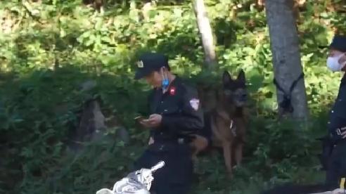 [Video] Đang truy bắt kẻ giết người vượt ngục lần 2 trên núi Hải Vân